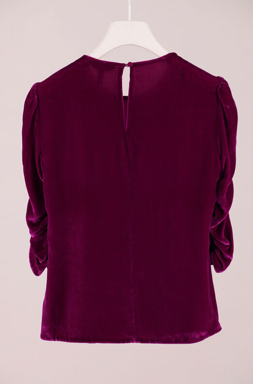 Recollect Ruched Sleeve Velvet Top