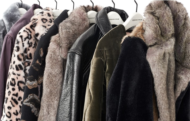 Shop THE COAT GUIDE